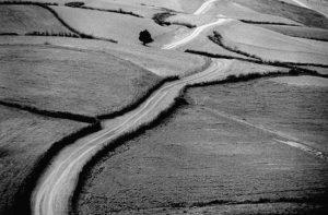 راهها-یادداشتی بر جاده های کیارستمی