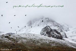 طبیعت- نقش اول